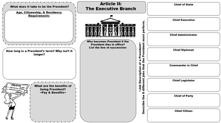 Best 25 Executive Branch Ideas On Pinterest 3 Branches