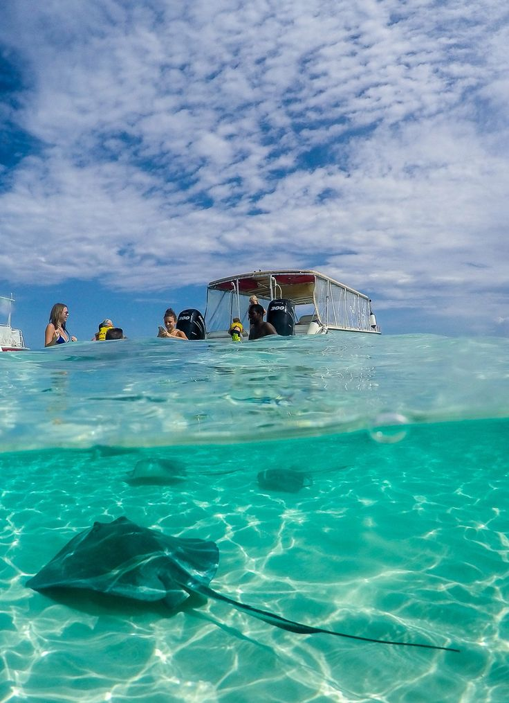Stingray City is a great thing to do in Grand Cayman with kids (or without).