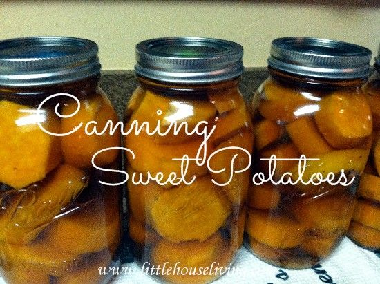 Post image for Canning Sweet Potatoes