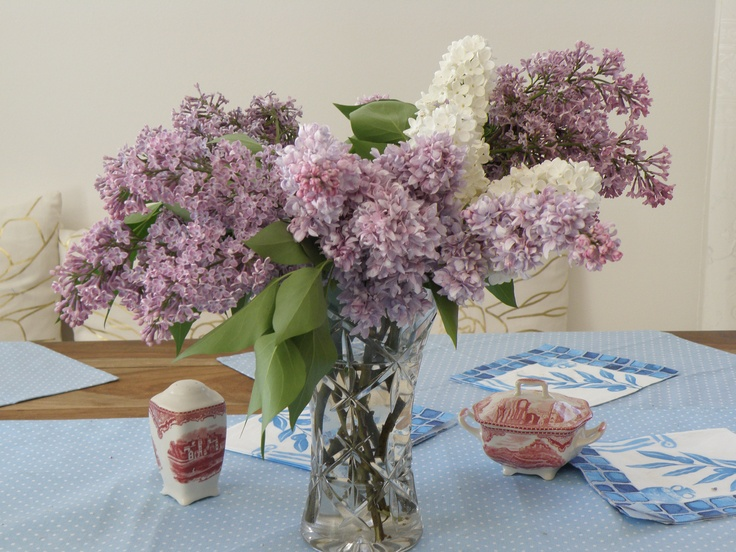 Lilacs - bouqet full of fragrance and beauty.