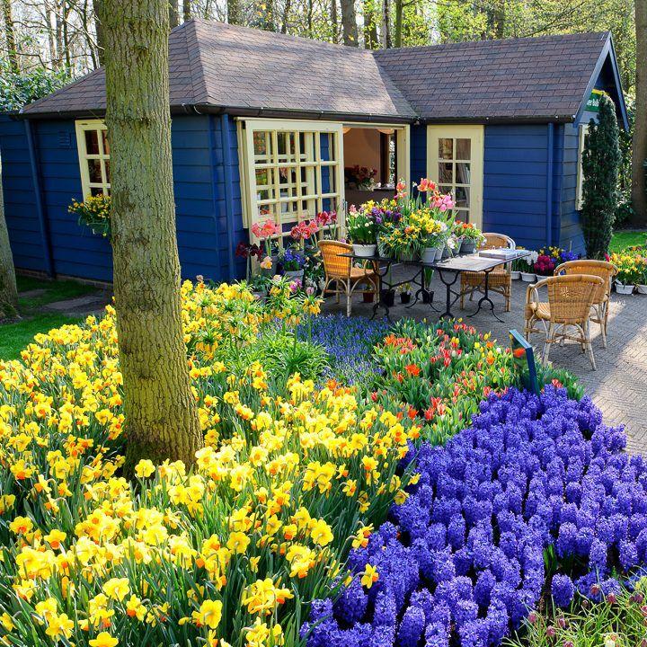 Garden Color Schemes How To Create Gorgeous Garden Color Combinations Gardening From House To Home Small Backyard Gardens Backyard Garden Landscape Gorgeous Gardens