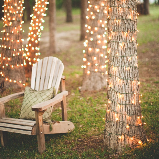 Fairy lights around tree trunks: Outdoor Wedding, Trees Trunks, Twinkle Lights, White Lights, Fairies Lights, Christmas Lights, String Lights, Outdoor Parties, Backyard