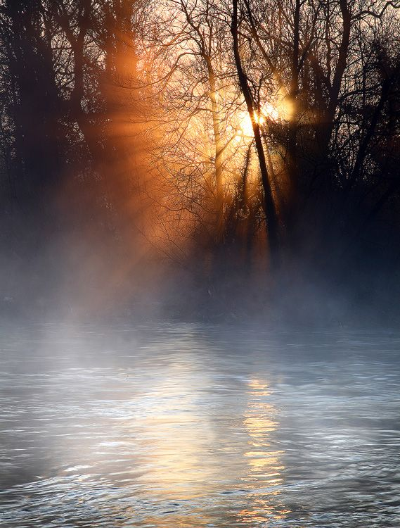 henley on thames mist river james appleton landscape photography uk Strong morning sunlight filtering through the spring branches over the Thames near Henley