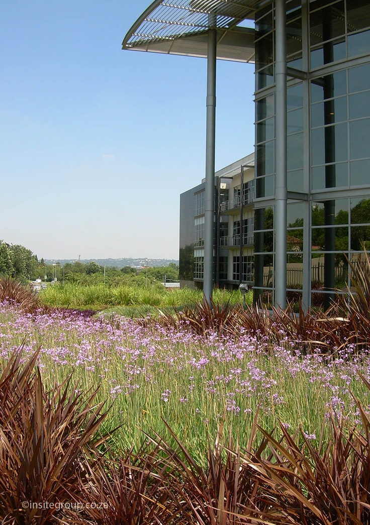 Beautification at the 3M office park, South Africa. (con