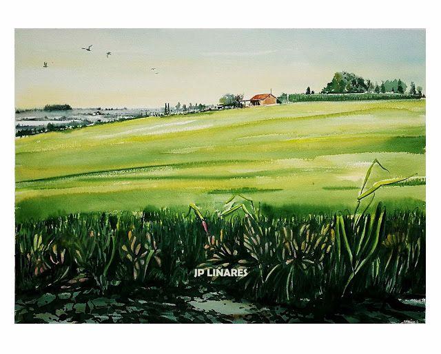Juan P. LINARES - Pintor: ACUARELA REF_2091704_Campo de cebada