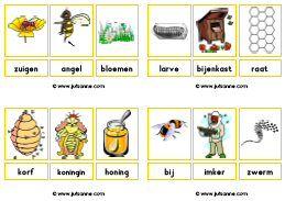 Woordkaarten downloads - Juf Sanne