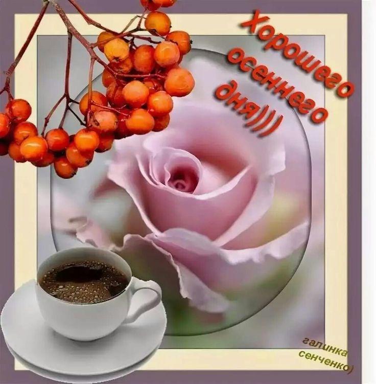 Днем, открытки доброго осеннего утра и хорошего настроения на весь день