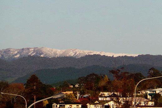SunLive - Snow on Kaimai Ranges - The Bay's News First
