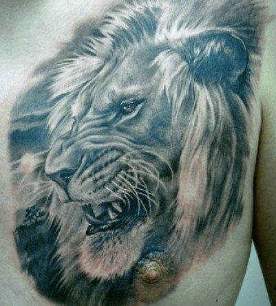 Lion Tattoos - Tattoos.net 8531 Santa Monica Blvd West Hollywood, CA 90069 - Call or stop by anytime. UPDATE: Now ANYONE can call our Drug and Drama Helpline Free at 310-855-9168.