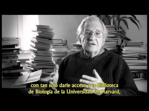 Noam Chomsky - El objetivo de la educación - Subtitulado - YouTube