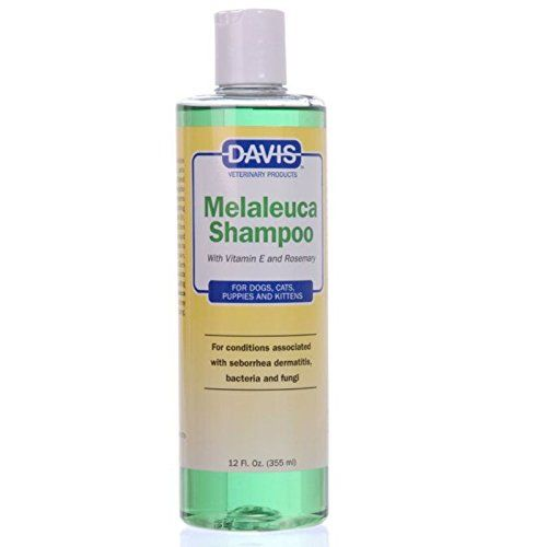 Davis Melaleuca Shampoo, 12 oz:   Davis Melaleuca Shampoo Help relieve the itching, scaling and dry skin resulting from seborrhea dermatitis, skin bacteria and fungi with this all-natural shampoo made with soothing tea tree oil. The synergistic combinatio
