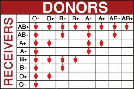 Donors/Receivers