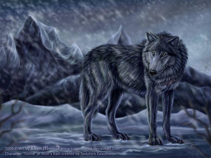 Tsume from Wolf's Rain by BlackMysticA.deviantart.com on @DeviantArt