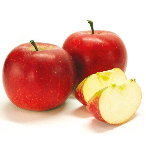 Jabłoń - Malus domestica 'Red Boskoop'