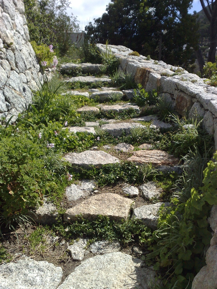 Garden Stairs Higgovale Cape Town