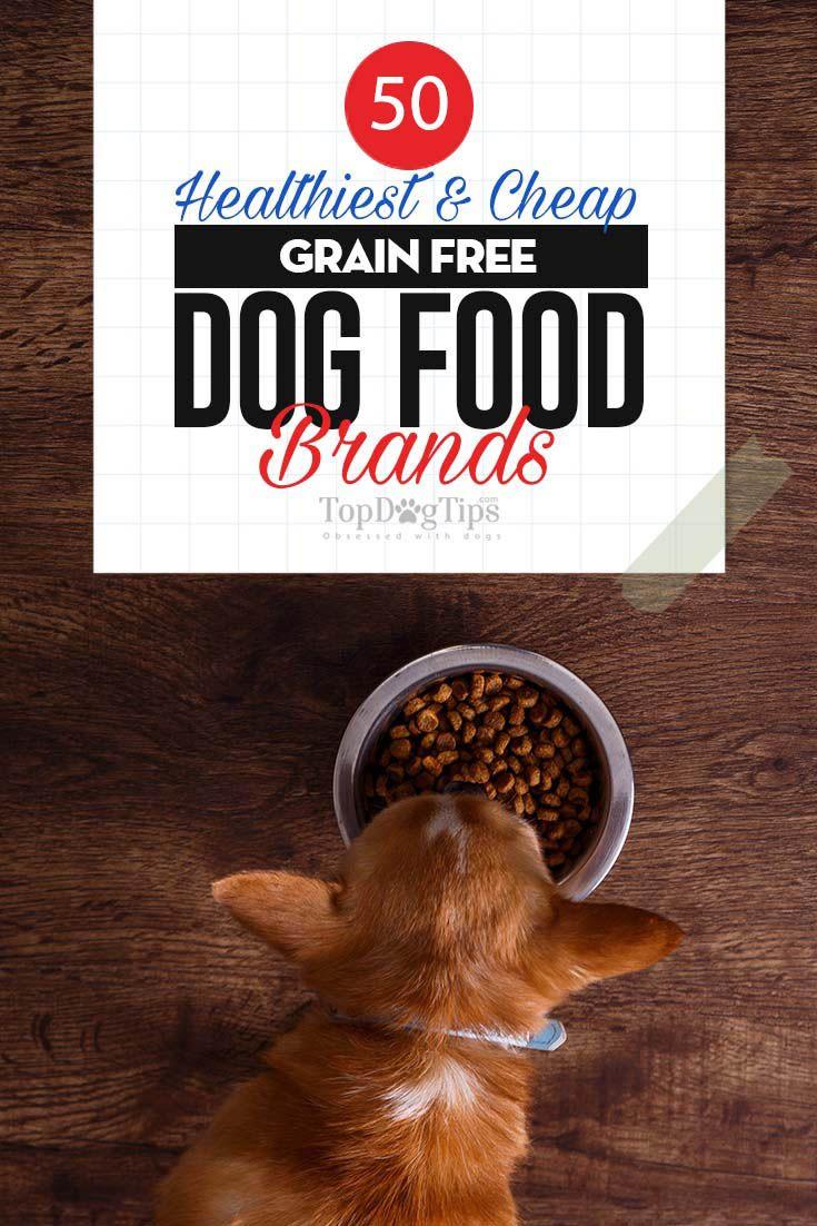 The 50 Best Grain Free Dog Foods Dog Food Recipes Grain Free