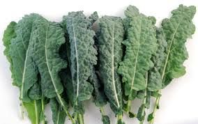 I am the daddy of superfoods!, that is Kale to you and me