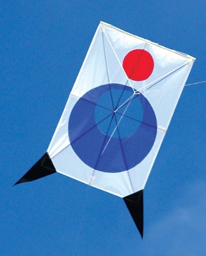 11 best kite fighting images on pinterest kite kites for Indoor kite design