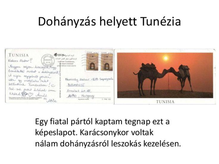 http://biorezonanciameres.hu/dohanyzas-helyett-tunezia/ Dohányzás helyett Tunézia