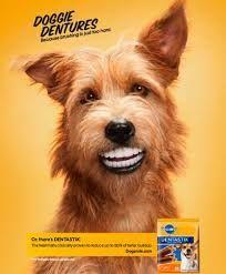 Este perro tiene una boca con una dentadura humana, sonriente y con una boca limpia. Lo que vende son unas barritas que se usan para limpiar la boca de los perros.