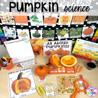 All About Pumpkins – Science for Little Learners (preschool, pre-k, & kinder)