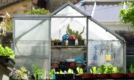 94 Best Images About Greenhouses Glasshouses