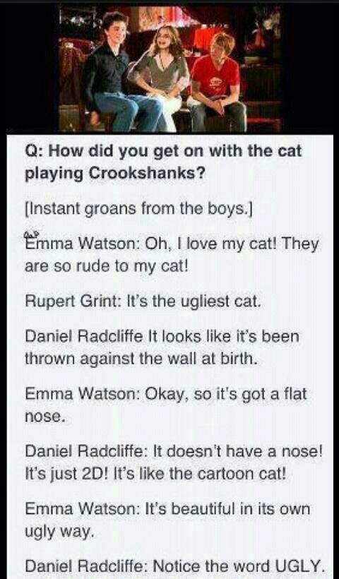 Harry Potter cast interview... Seriously sounds like an exact conversation that the golden trio had in the books