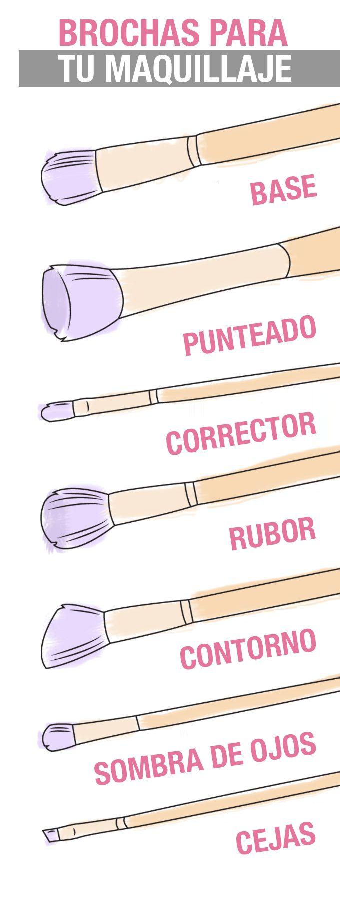 Muchas de nosotras no sabemos para qué sirve cada brocha, aquí una idea básica…