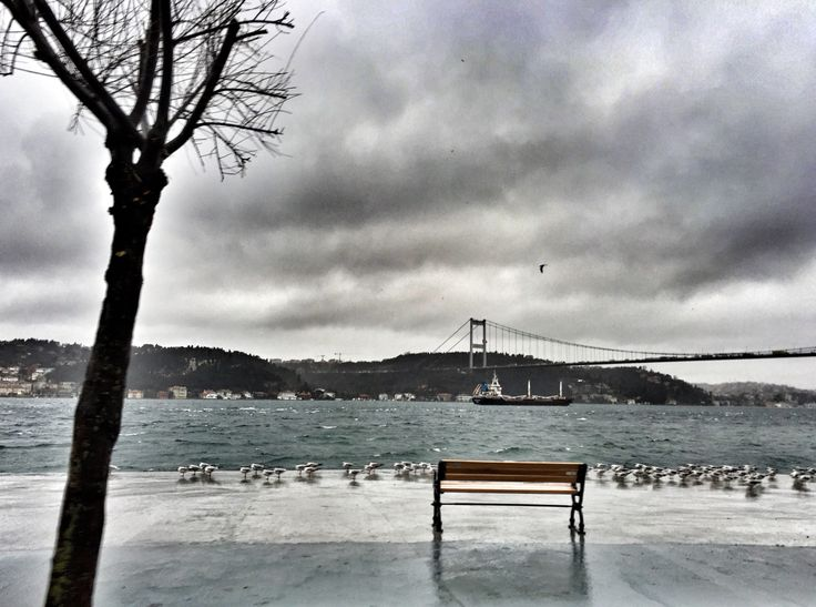 ❤️ #istanbul #emirgan