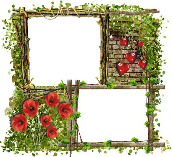 image du blog fonds de pages fleurs pinterest cadres bordure et. Black Bedroom Furniture Sets. Home Design Ideas