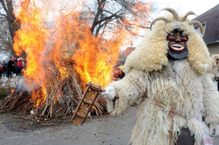 """Busójárás"" - traditional winter aconite folklore. Buso costumed figure holding a clicker - Mohacs, Hungary"