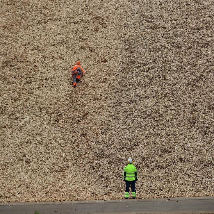 As a Stora Enso employee, you are faced with different situations and tasks and some may be more strange than others. Like climbing a chip pile at Montes del Plata, with a camera crew from a Swedish TV-show behind your back.
