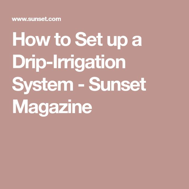 How to Set up a Drip-Irrigation System - Sunset Magazine