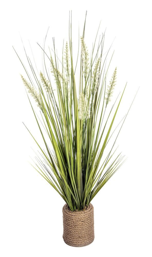 Laura Ashley Onion Grass In Rope Vase 17x17x40h New Fashion Home Garden Homedcor Floraldcor Ebay Link Grass Decor Contemporary Planters Floor Plants