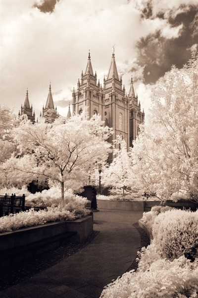 Salt Lake Pathway IR by Robert Boyd