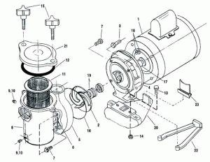Pin on Pool and Spa Pumps and Parts