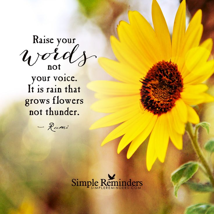 sunflower christian single men Our vision is to see men restored into their godly identities and released in power, love, purity, excellence, and unity.