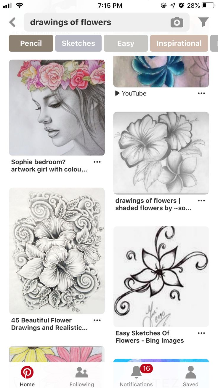 Pin by Sabrina Crist on Wood burning Flower sketches