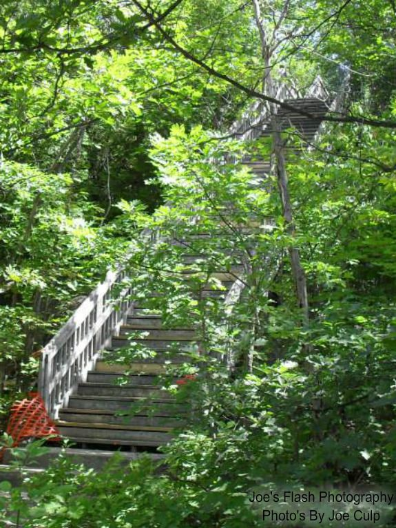Stairs To The Belvedare Heights Parry Sound Ontario Pictures