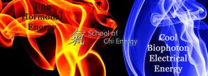 "The School of Chi Energy presents a seminar on ""Jing"" Sexual Energy vs Bio-photon Electrical Energy Cultivation"