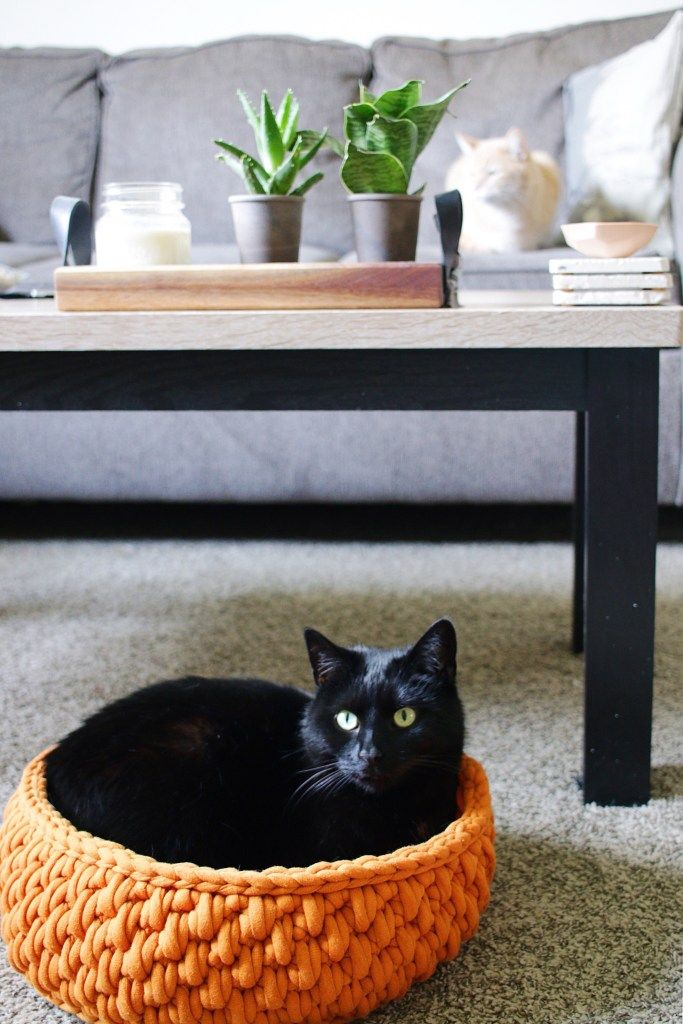 The Big Little Pet Bed A Round Cat Bed Made With Jumbo Yarn Tl Yarn Crafts Tl Yarn Crafts Big Yarn Crochet Cat Bed