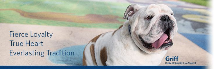 Griff is the Drake University live mascot. He is named after John L. Griffith, who organized the first Drake Relays.