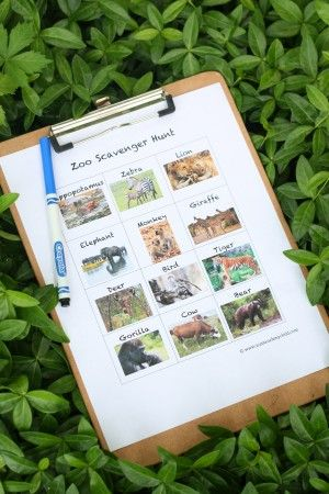 Printable Zoo Scavenger Hunt from I Can Teach My Child