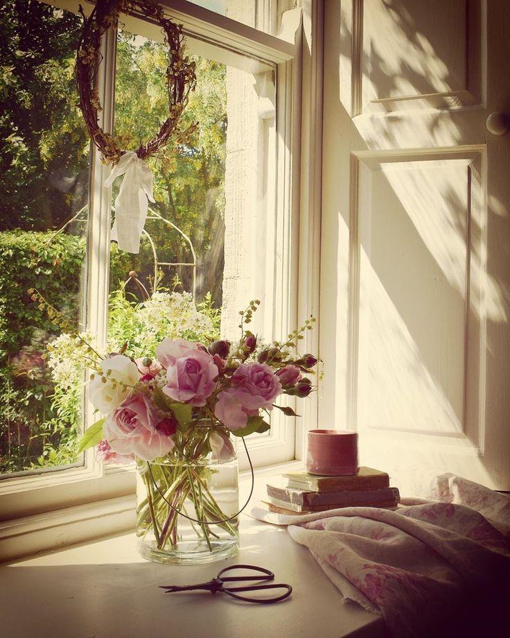 книжка красивые картинки окно с цветами расскажу вам