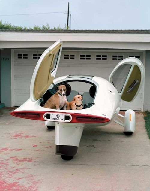retro-futuristic vehicle, doggies in tow!