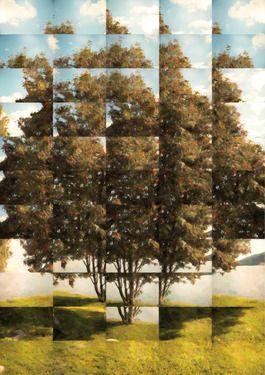 "Saatchi Online Artist: Jonas Howden Sjøvaag; Digital Collage, New Media Art ""David's rowanberries I   15 available"""