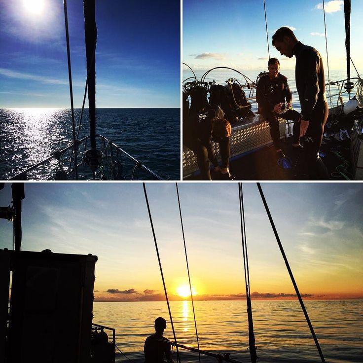 Zwei tolle Tage am Great Barrier Reef sind vorbei morgen geht es zum Skydive und weiter die Ostküste runter #aroundtheworld#cairns#greatbarrierreef#diving#sailing#sunset#enjoy#relax#hamburg#hamburg#jork#hakunamatatabrothers#hmb by hakunamatatabrothers http://ift.tt/1UokkV2