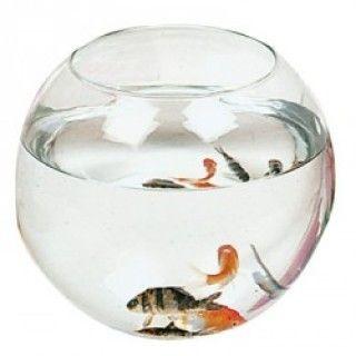 Aquarium Boule Zolux