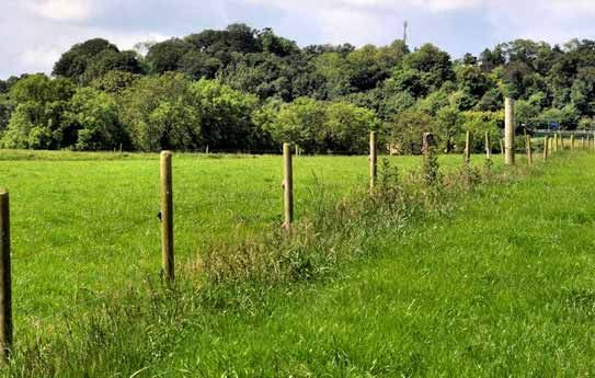 Electric Fence Installation - Construction Tips