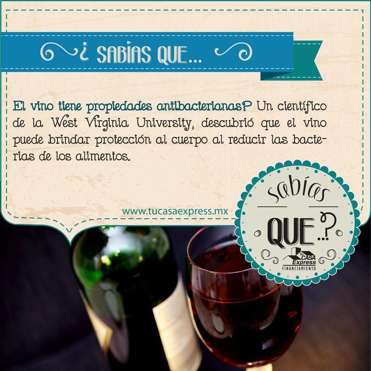 ¿Sabías que… el vino tiene propiedades antibacterianas? Tu Casa Express - #Salud